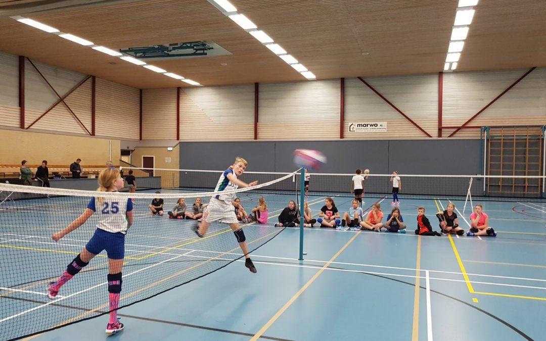 Volleybal- en smashballtoernooi in de Bindelwijk